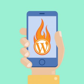 WordPress Hosting  Mobile Caching